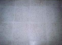 Terrazzoplatten nach der Sanierung