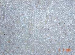 Risse beseitigen im Boden